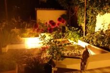 Jardín en Santa Ana de noche