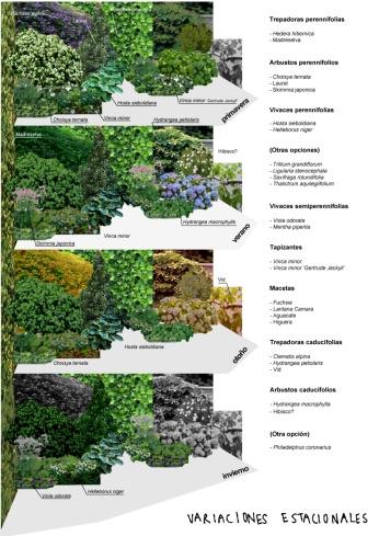 Variaciones estacionales en la terraza de Teresa y Manu_PepiLuci
