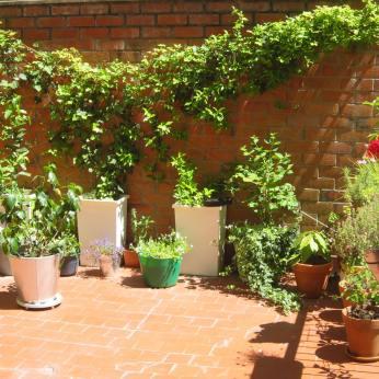 Terraza de Teresa y Manu un año después, en junio